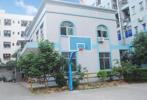 SHELL basketball court